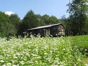 garden cabin 2 (Custom)
